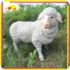 KANO0098 Animal craft life size garden decorative fiberglass sheep statue