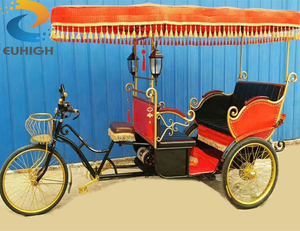 Tricycle with roof rickshaw bike ester pedicab