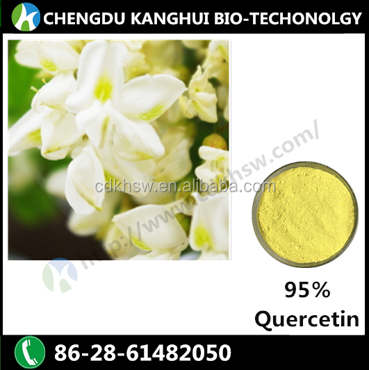 High quality 100% natural plant extracts 95% Quercetin dihydrate 6151-25-3