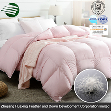 China product Super Soft Goose Down Quilt