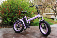 "Customized 20"" fat ebike electric chopper bike 500w hub motor"