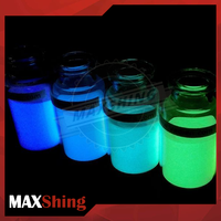 Glow In The Dark Pigment Powder