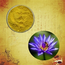 High quality and 100% natural blue lotus extract lotus extract blue lotus extract powder