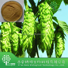 Hops Flower Extract,Humulus Lupulus Extract 10:1