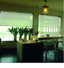 20 YEARS EXPERIENCE QUALITY OUTDOOR ROLLER BLINDS