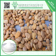 Manufacturer high quality Bitter apricot seed extract 50%-98% Amygdalin