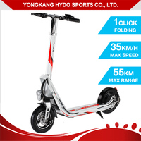 Special Shape Big Wheel Electric Scooter