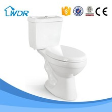 Foshan ceramic hot sale new type washdown two piece toilet