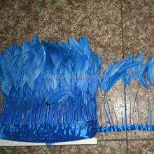 Stripped ROOSTER Feathers