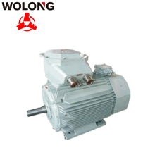 YB2E CNE IE2 High Efficiency 6P 3 phase explosion proof induction AC Motor 0.55KW