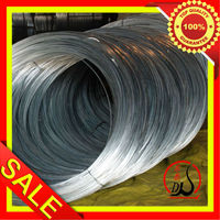 Electro Galvanized Gi Binding Wire