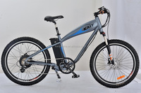 CE 36V electric bicycle