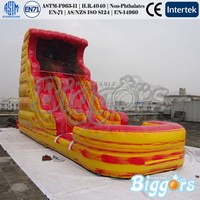 Funny Outdoor Slide Giant Inflatable Water Slide For Adult