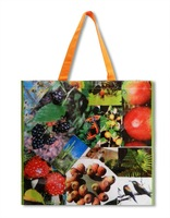 top1 Waterproof PP non woven grocery tote bags, coated non woven polypropylene bags, insulated grocery tote bag