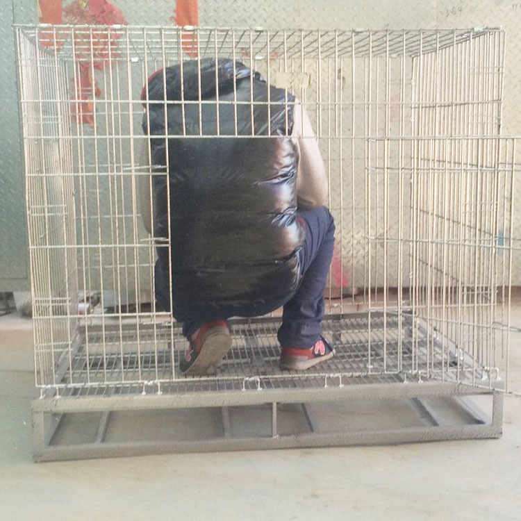 Hot Sale Iron Wire Dog Cage with Stainless Steel Corner