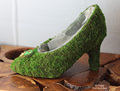 Botanical moss shoes succulent planter