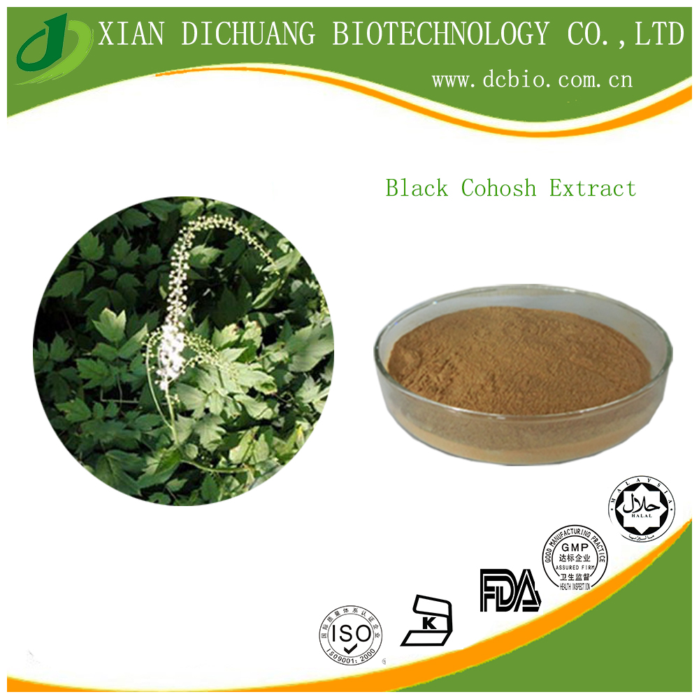 Pure natural black cohosh extract powder 10:1black cohosh P.E in herbal extract