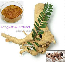 200:1 Excellent quality & natural tongkat ali extract, tongkat ali herbs, medicine for long time sex