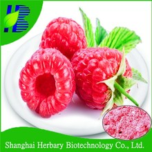 2016 Latest natural fruit extract, Factory Price Raspberry ketone powder