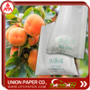 Sweet persimmons protection bag Grow Bags For Fruit