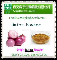 100% Natural and Best Quality Onion Powder 2% 5% 10% 10:1 20:1