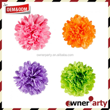 Tissue Paper Hanging Decorations Birthday Party Pom Poms