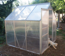 1.9m width Cold Frame Greenhouse in Aluminum Frame and Polycarbonate Panels with Single Slide Door