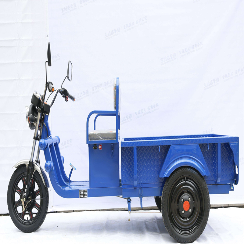 cheap China high quality cargo tricycle/three wheel electric motorcycle with 650W motor
