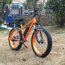 350W 8fun motor fat tire mountain electric bike/fat tire electric bicycle/mountain e bike RSEB508