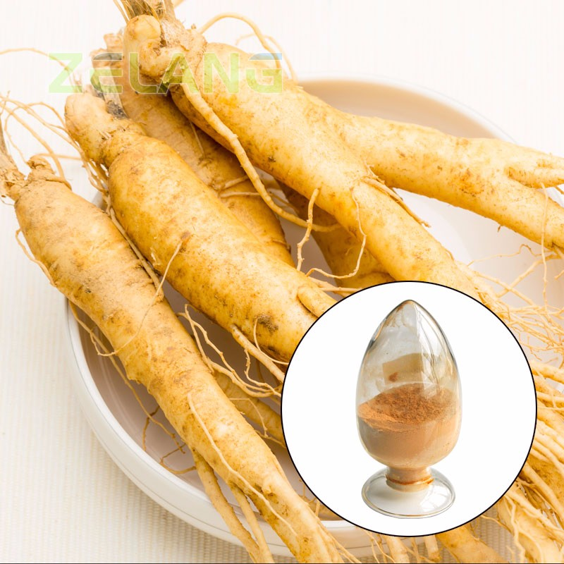 High Quality 100% Natural Natural Siberian Ginseng P.E.