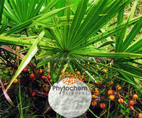 100% natural saw palmetto extract powder in china