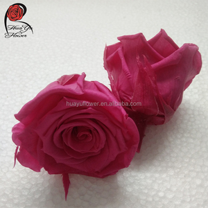 wholesale 2-3cm size rose head preserved flowers 24pcs/box immortal rose