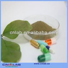 China Plant With HACCP,BRC Certificated Black Cohosh P.E.