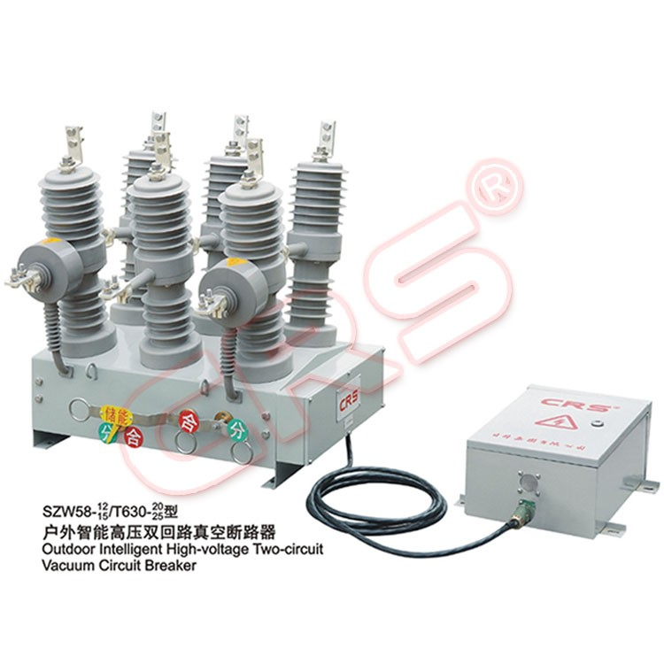 Outdoor High Voltage High Technology China OEM switch with circuit breaker dz47 c45
