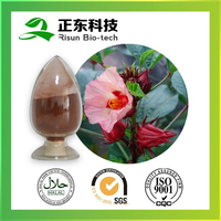 Powder Form Roselle Extract 10:1 Powder