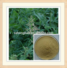 100% Pure Natural food supplement 10:1 nettle leaf powder