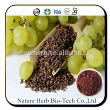 Low price of grape seed extract opc 95%