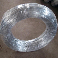 Galvanized wire used on brush and filter slice , Durable iron wire with professional factory , Galvanized wire