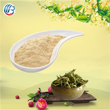 LanBing supply bulk pure natural organic high quality honeysuckle flower extract for clearing away heat