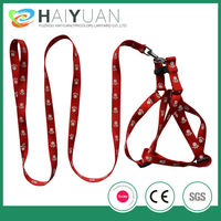 dog leashes and collars