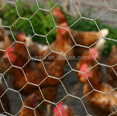 Chicken Wire Cheap ( Hot Selling, Fast Delivery )
