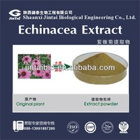 echinacea angustifolia leaf extract echinacea leaves extract