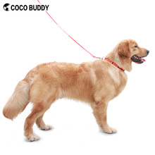 Hot Selling Professional Embroidery Personalised Pet Names Eco Friendly Bamboo Webbings Service Dog Collars