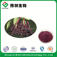 GMP Manufacturer Supply Elderberry Extract Anthocyanins 5% 10% 25% HPLC