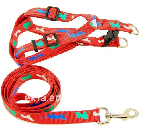 Pet leash and harness with animal design