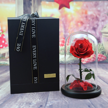 Last 5 Years Glass Cover Preserved Real Fresh Red Color Little Prince Forever Rose in Glass