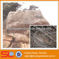 Strong structure slope stabilization mesh