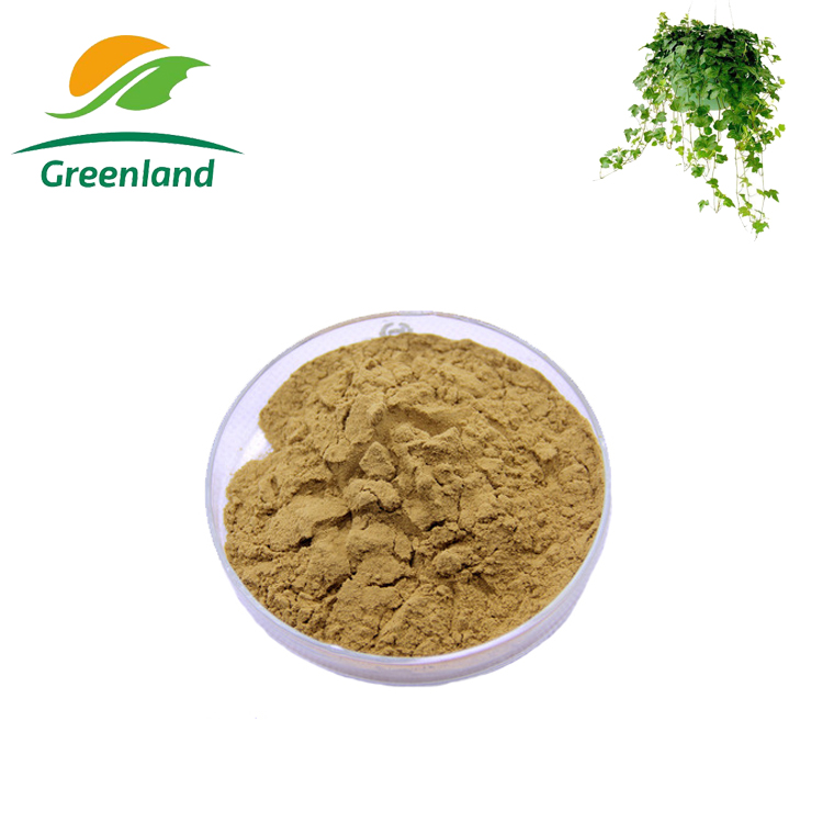 Factory supply China Plant extract Ivy Extract