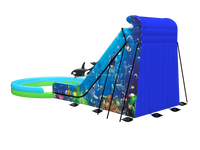 Professional supplier giant inflatable slide, giant inflatable water slide for adult, inflatable jumping slide with pool