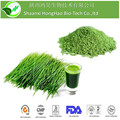 ISO&Kosher Certified 200Mesh Pure Natural Young Barley Grass Powder